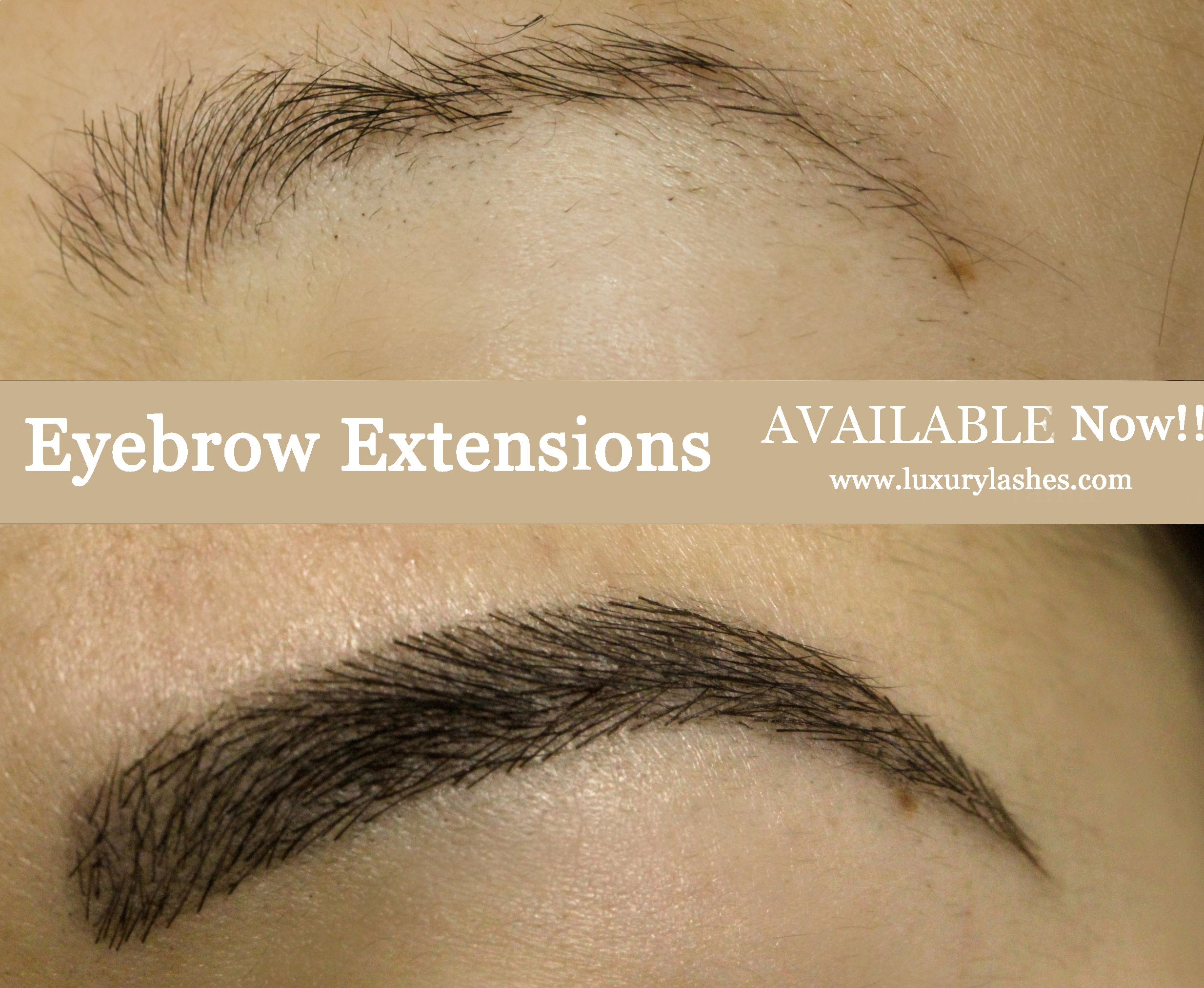apply thick long eyebrow extensions in ny