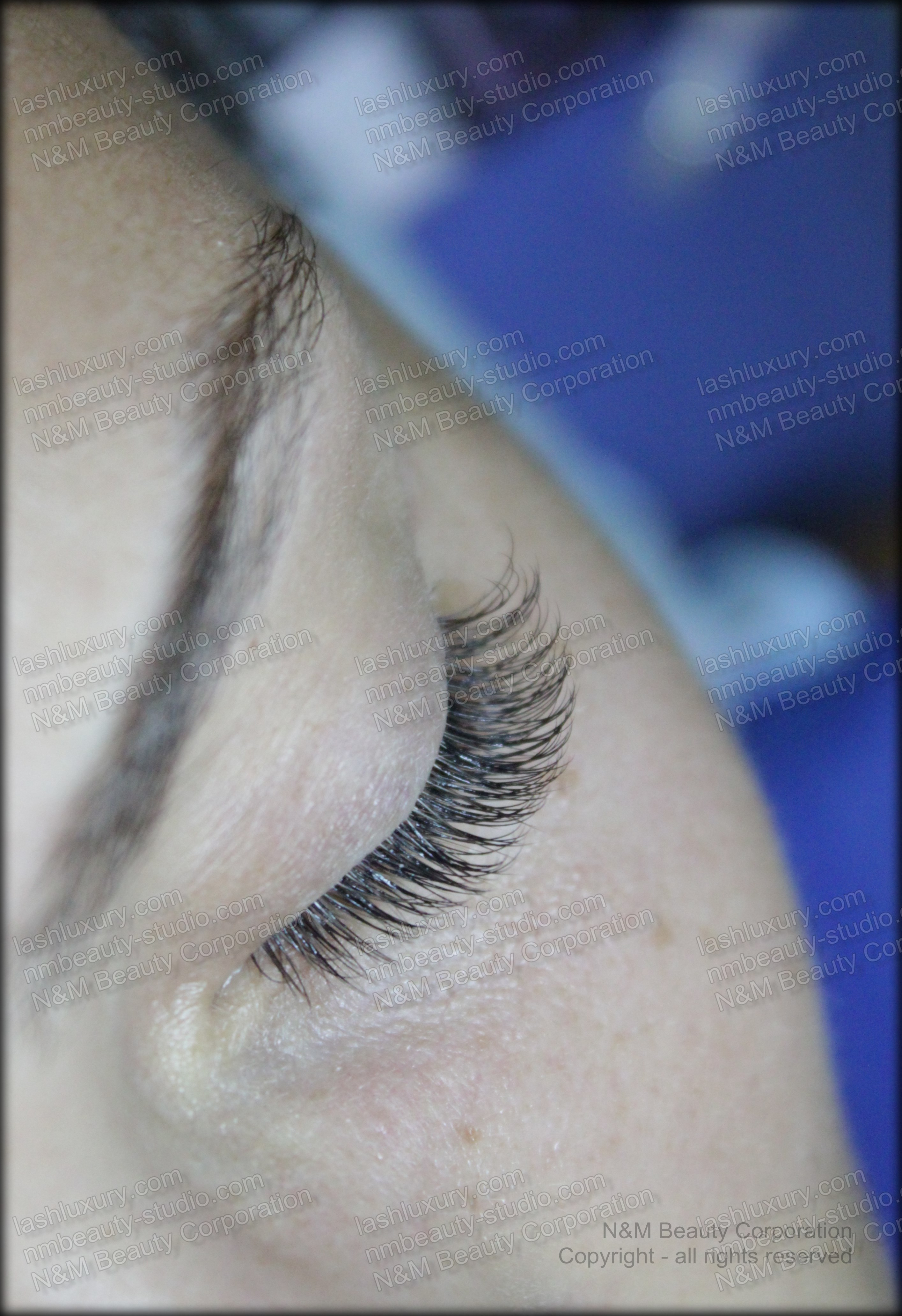 brooklyn manhattan new york eyelash extensions